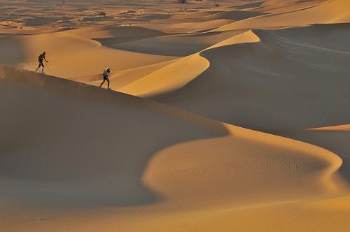 desertcarmin.jpg